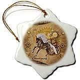 3dRose Heike Köhnen Design Steampunk - Golden steampunk horse - 3 inch Snowflake Porcelain Ornament (orn_287337_1)