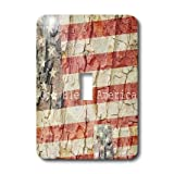 3dRose LLC lsp_28061_1 American Flag God Bless America, Single Toggle Switch