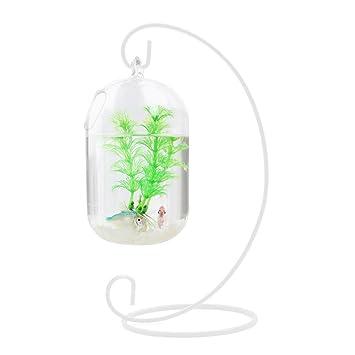 WINOMO 15cm suspendido transparente colgante de cristal tanque de peces botella de infusión acuario florero planta florero para la decoración del hogar ...