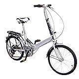Garain 20'' Wheel Folding Bike 6 Speed Mountain Bicycle Cycling Double Disk Break Silver