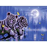 Pet1997 DIY 5D Diamond Paintings by Number Kit, Full Drill Cross Stitch Kit, Cross Stitch Kits Crystal Rhinestone Diamond Embroidery Paintings Pictures Arts Craft for Home Wall Decor (B)