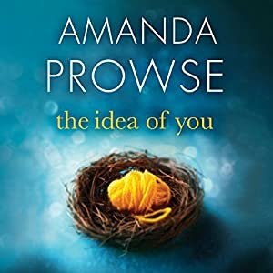 The Idea of You Audiobook