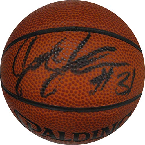- Joe Johnson Hand Signed Autographed Mini Basketball Boston Celtics Heat