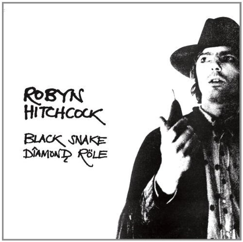 Black Snake Diamond Role by Robyn Hitchcock (2007) Audio CD (Robyn Hitchcock Black Snake)