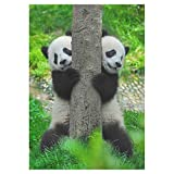BoloHome Cute Panda Bear Twins Garden Flag Double Sided Outdoor Banner 28 x 40 inch, Seasonal Green Tree Decorative Large House Flags for Wedding Party Yard Home Decor, 100% Polyester
