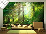 wall26 - Park. Beautiful misty old forest - Removable Wall Mural | Self-adhesive Large Wallpaper - 100x144 inches