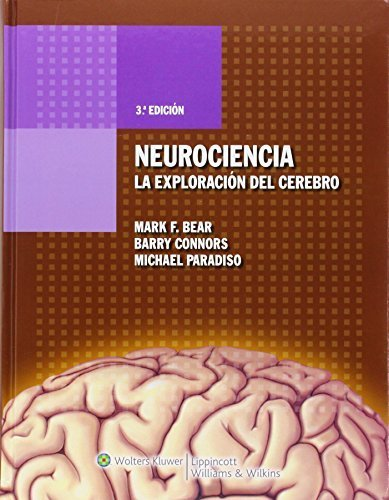 Neurociencia. La exploración del cerebro (Spanish Edition) by Bear PhD, Mark F., Connors PhD, Barry, Paradiso PhD, Michael (2008) Hardcover