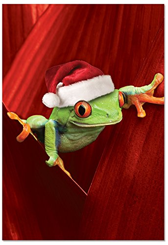 The Best Card Company B1754EXSG Box Set of 12 Yule Frogs Christmas Greeting Cards with Envelopes