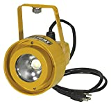 ProLight 111515 20W Dock Light - Head Only LED, Yellow