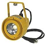 ProLight 111515 20W Dock Light - Head Only LED, Yellow