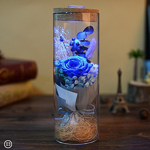 Glowing Rose - ZHUOTOP Glowing Preserved Red Rose Glass with Remote Control Valentines Gifts Blue