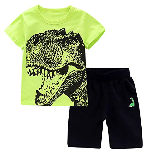 Toddler Little Baby Boys Girl Summer Outfits Clothes Set Infant Pajamas Top and Shorts