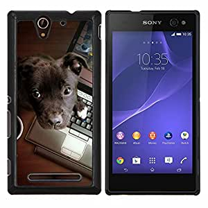 De Brown Labrador retriever Trabajo- Metal de aluminio y de plástico duro Caja del teléfono - Negro - Sony Xperia C3 D2533 / C3 Dual D2502