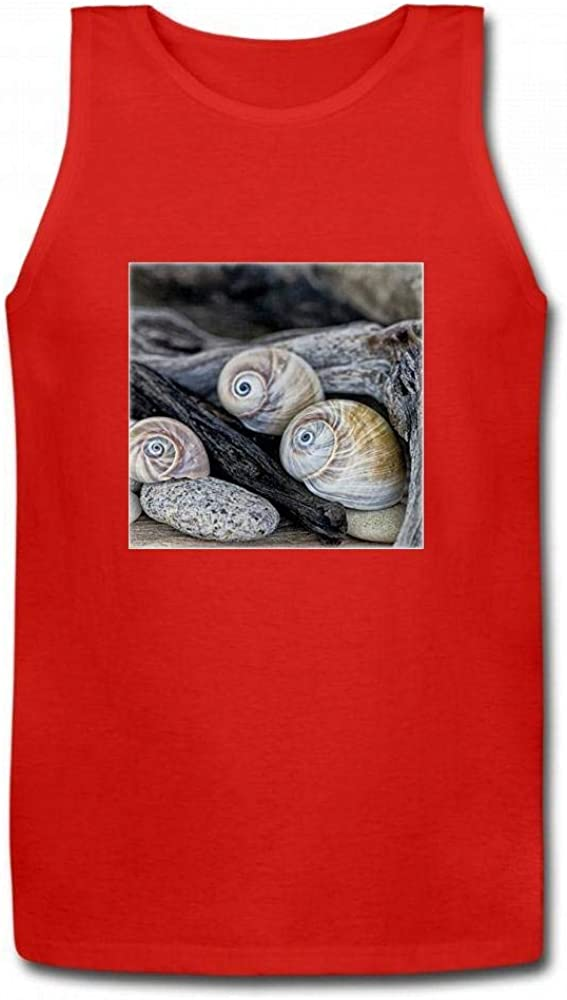 Andrea Haase Nature Photography Still Life with Sharks Eye Shells and Driftwood Men Sleeveless Tank Top