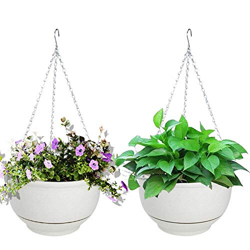 Vencer (Set of 2 Metal Hanging Planter