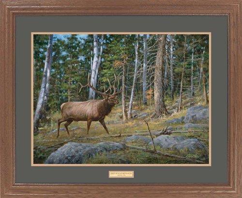 Deep Woods Monarch - Elk GNA Premium Framed Print by Jim Killen