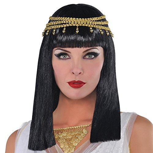 Golden Goddess Egyptian Costume (Amscan Gracious Gods and Goddess Egyptian Queen Wig (1 Piece), One Size, Black/Gold)