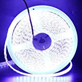 XUNATA 16.4FT LED Strip Lights, 12V 600 Units SMD 5630 Waterproof Flexible LED Rope Tape Ribbon Light Strips, for Ceiling Home Kitchen Bedroom Decoraion(White)