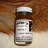 "Cavens Yodel Dog ""Coyote Gland Lure"" 1 oz."