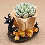 HEYFAIR Japan Animation Cat Jiji Cactus Succulent Planter Pot Container Gardens