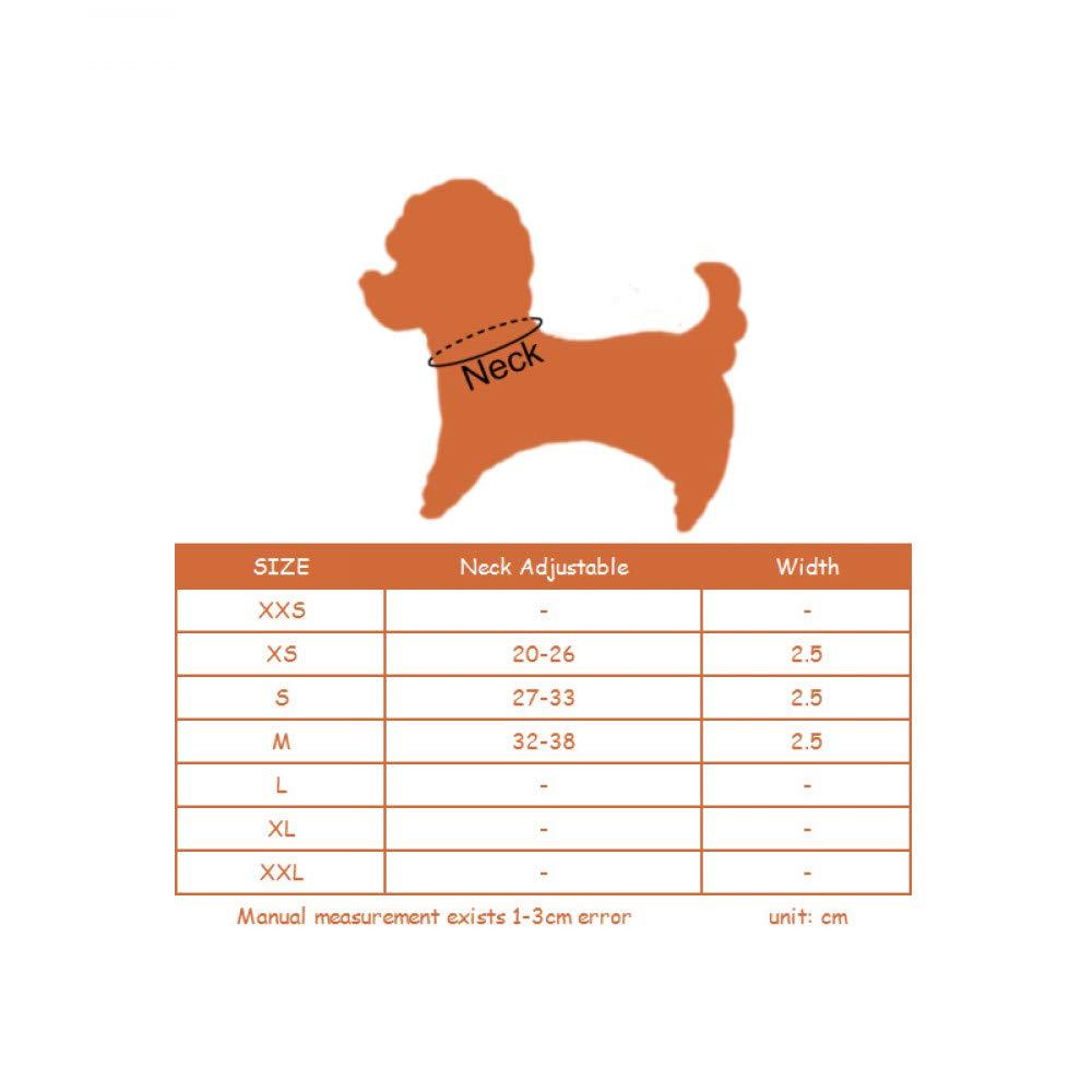HAOKAN Collar De Mascota Accesorios para Mascotas Collar De Correa De Diamantes De Imitaci/ón Collar De Correas De Diamantes De Imitaci/ón Gatito para Mascotas Collar De Perro