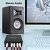 4-Way Stereo L/R Sound Channel Bi-Directional Audio