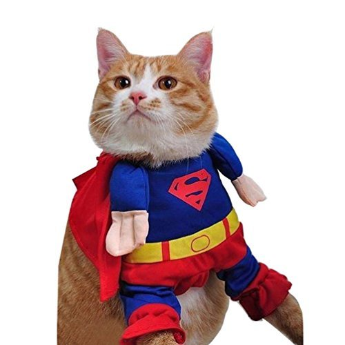 Top 6 Best Halloween Cat Costumes (2020 Reviews & Guide) 5