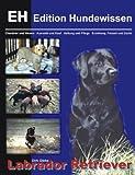 Labrador Retriever, Dirk Glebe, 3831133034