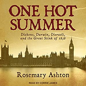 One Hot Summer Audiobook