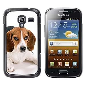 COVERO Samsung Galaxy Ace 2 I8160 Ace II X S7560M / Beagle puppy small breed dog muzzle / Prima Delgada SLIM Casa Carcasa Funda Case Bandera Cover Armor Shell PC / Aliminium