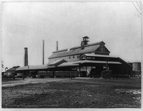 Historic Photos 1904 Photo Modern sugar mill, plantation Rosario at Aguacate, Cuba Location: Aguacate, Cuba