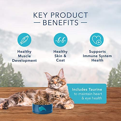 Blue Buffalo Wilderness High Protein Grain Free, Natural Adult Dry Cat Food, Chicken 6