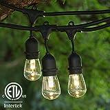 Lights 48 ft Black Suspended ETL Listed - LED S14 Professional WW Bulb