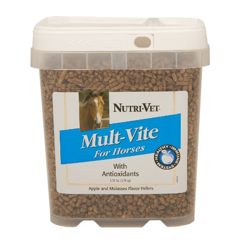 Nutri-Vet Multi-Vite with Antioxidants, 3.75 pounds - incensecentral.us