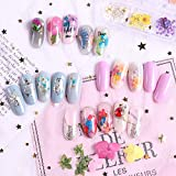 1 Case Dried Flowers Nail Art Summer Florals Leaf