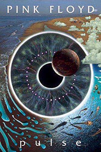 Pink Floyd   Pulse Eyeball Vision 36X24 Music Art Print Poster