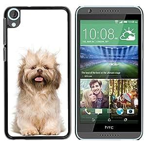 TopCaseStore / la caja del caucho duro de la cubierta de protección de la piel - Norfolk Terrier Puppy Glen Of Imaal Dog - HTC Desire 820