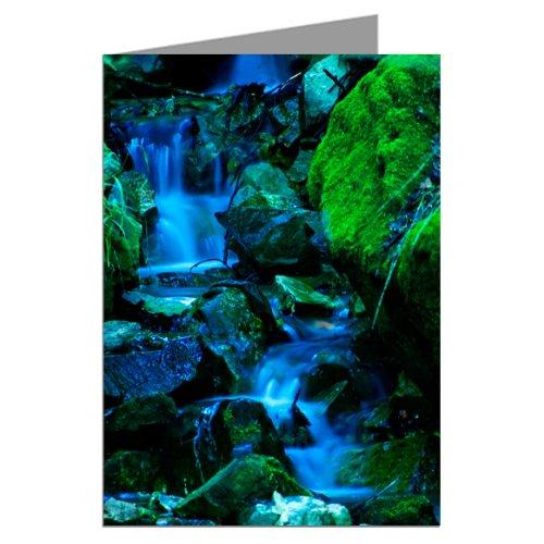 Waterfall in Muir Woods Greeting card set (Wfl Art)