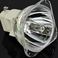 DLP Projector Replace Lamp Bulb For INFOCUS IN3102 IN3106 IN3902 IN390