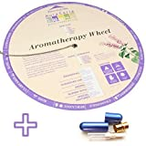 Aromatherapy Chart Wheel plus Quality Aluminum and Glass Essential Oil Inhaler with Wick Bundle