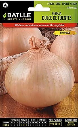 Semillas Hortícolas - Cebolla Dulce de Fuentes - Batlle