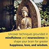 Buddha's Brain: The Practical Neuroscience of