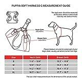 Puppia PARA-HC1533-CA-S Camo Soft Harness C