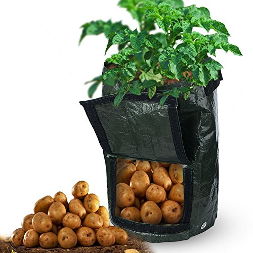 Pumpumly Plant Grow Bag, Black Potato Planter with Handles for Plants Vegetable and Flower 10 Gallon 2 Pack
