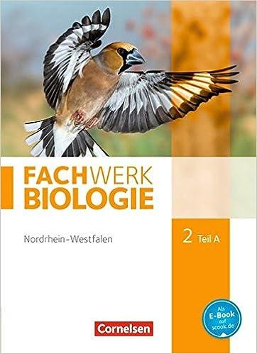 FachWerk Biologie 2 A
