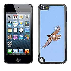 Plastic Shell Protective Case Cover || Apple iPod Touch 5 || Birds Blue Sky Wings Nature @XPTECH