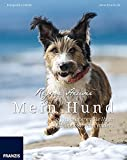 Mein Hund - So fotografieren Sie Ihren Liebling mal ganz anders: Fotografie al dente