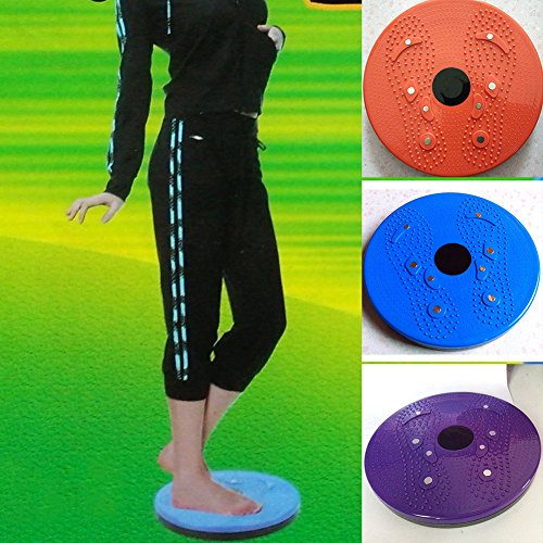 Shalleen Twist Waist Torsion Body Massage Board Aerobic Foot Exercise Fitness Twister