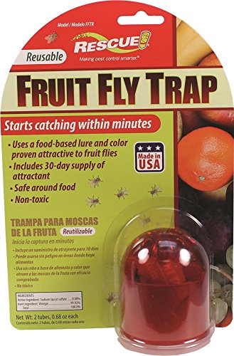 resuable fruit fly trap 30