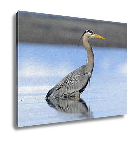 Ashley Canvas Great Blue Heron Ardea Herodias Wall Art Decoration Picture Painting Photo Photograph Poster Artworks, 20x25 - Pictures Great Blue Herons